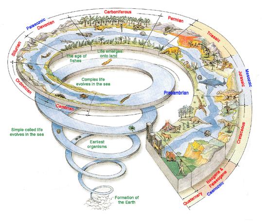 資訊圖表的種類-兼時間軸與地圖簡介