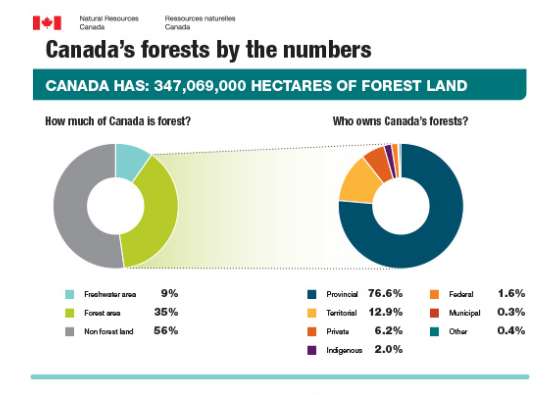 canadas_forests_by_the_numbers_en jpg  1224×792