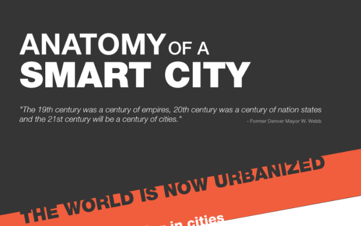 Infographic  The Anatomy of a Smart City